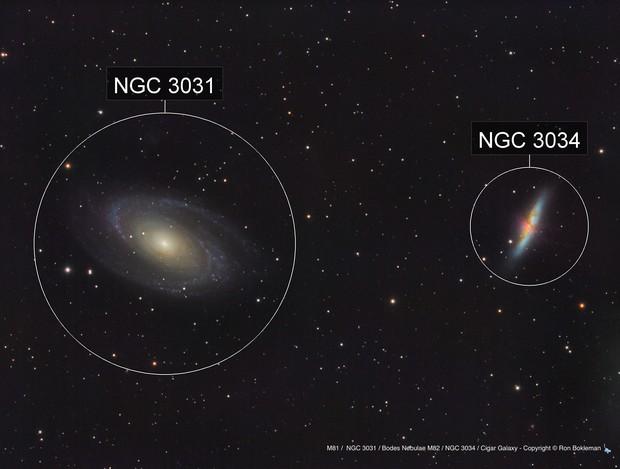 M81 /  NGC 3031 / Bodes Nebulae M82 / NGC 3034 / Cigar Galaxy