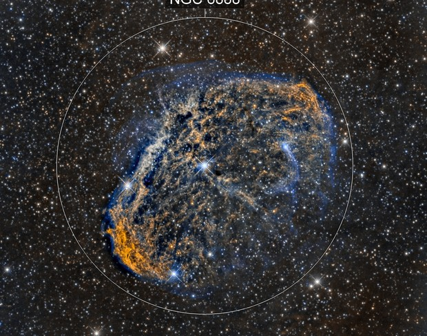 Crescent Nebula (NGC6888) close up in Hα/SII/OIII