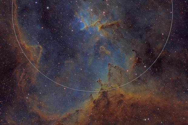 IC1805 Medium Field
