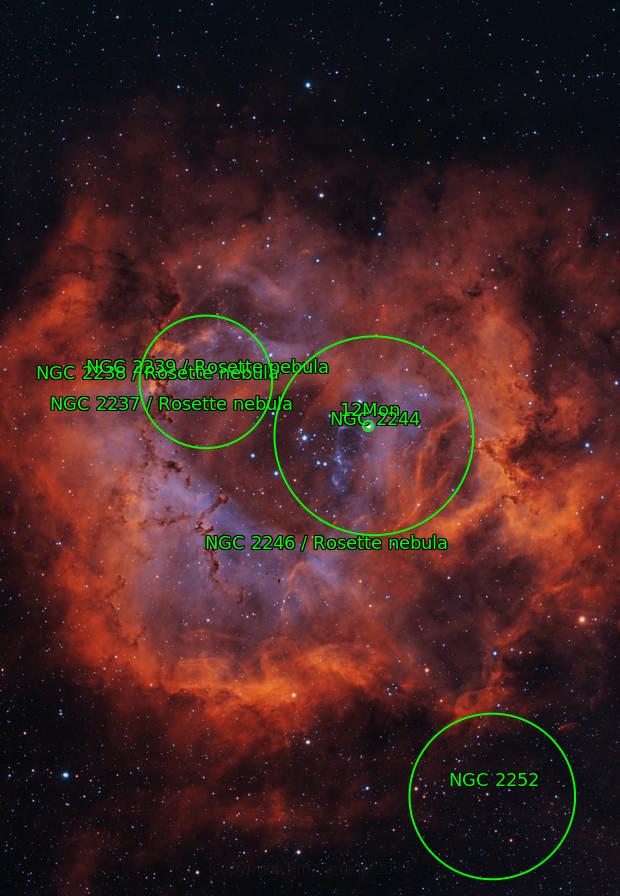 Bi-colour Rosette (NGC 2239)