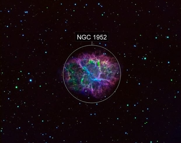 M1: The Crab Nebula II