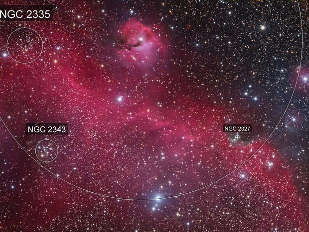 Seagull Nebula IC 2177