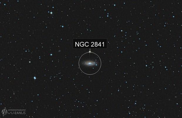 NGC 2841
