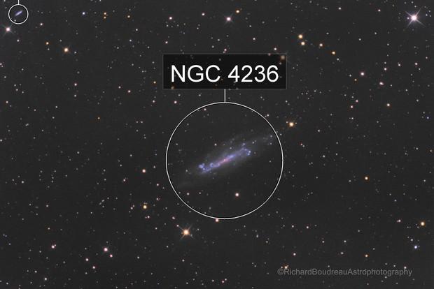 C 3    NGC 4236