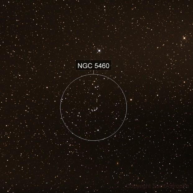 NGC5460 Open Cluster in Centaurus