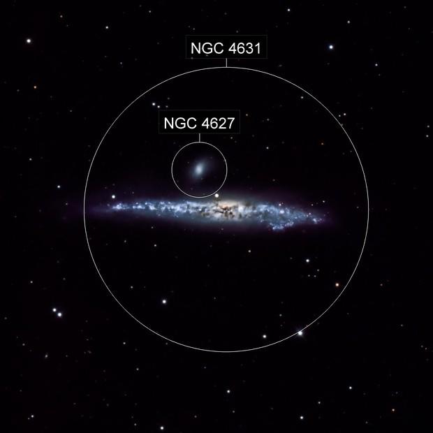 Whale Herring Galaxy (NGC4631)
