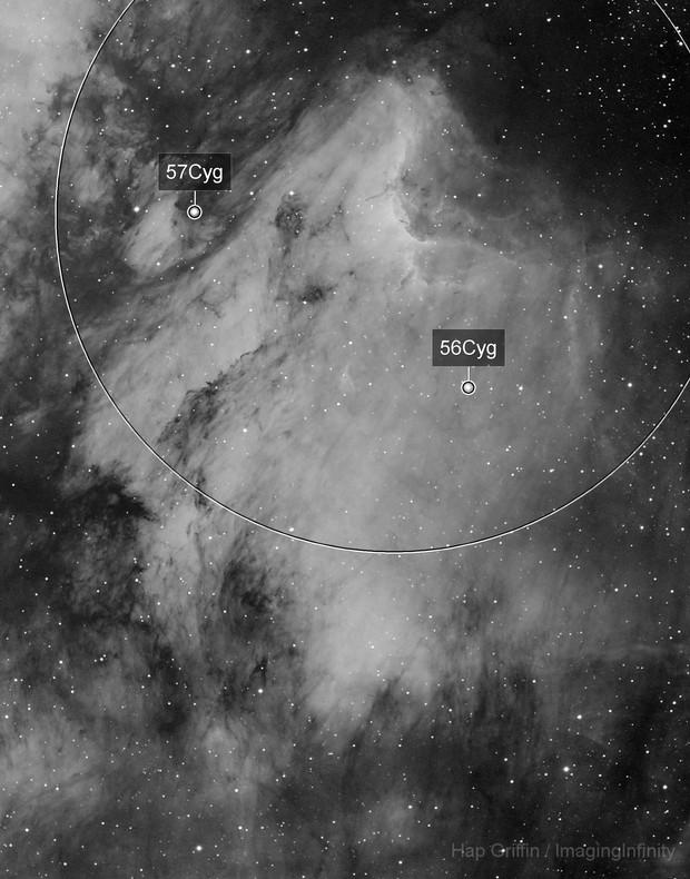 IC 5070 - The Pelican Nebula in Hydrogen Alpha