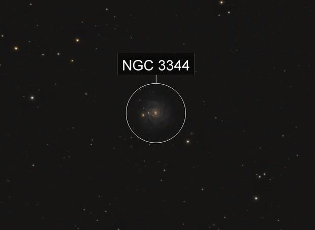 NGC3344