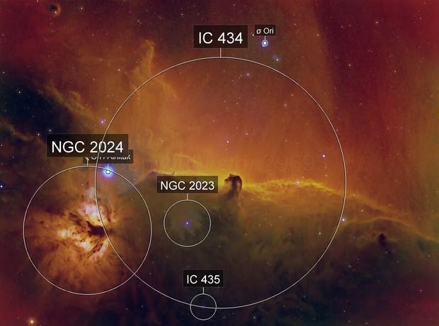Barnard 33 Horsehead and Flame Nebulas