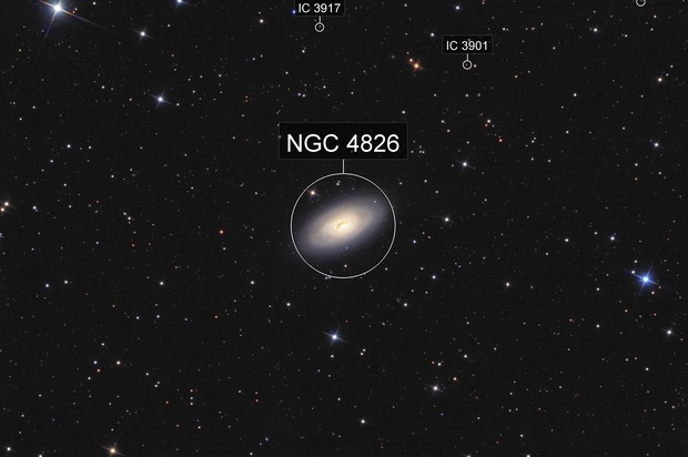 M64 in Coma Berenices