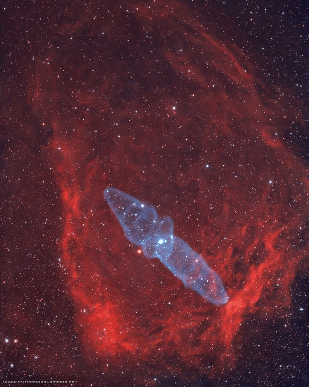 SH2-129 & Ou4 Flying Bat & Squid Nebula