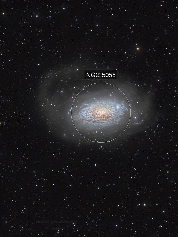 "M 63 or NGC 5055: ""Sunflower, bathed in rivers of the stars"""