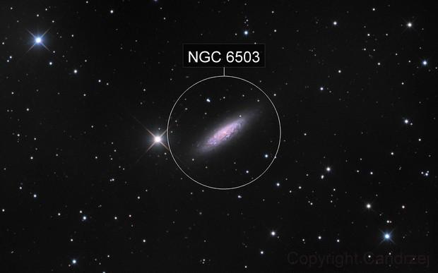 Ngc 6503