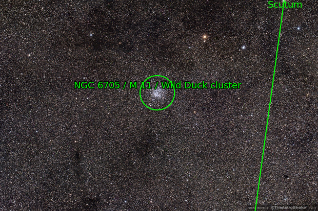 Messier 11 (M11) the Wild Duck Cluster