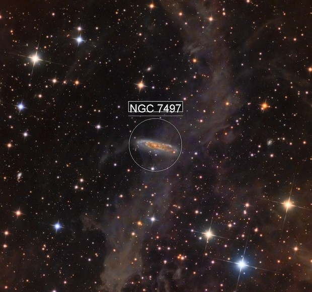 NGC 7497 and dust