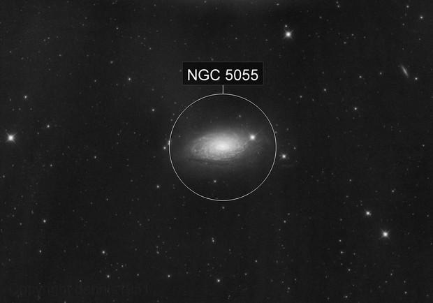 NGC 5055 Sunflower Galaxy