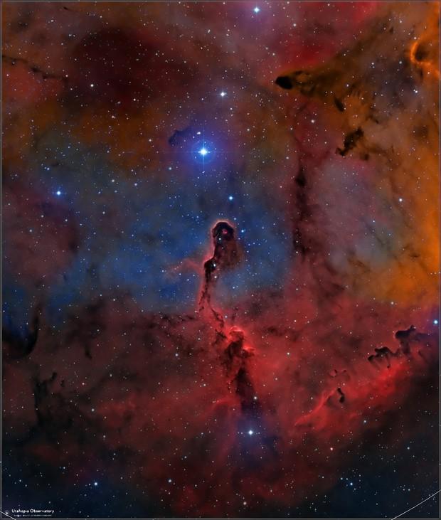 IC 1396 Elephant Trunk Nebula  HOO-LRGB