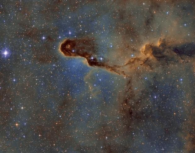 IC1396 La trompe SHO