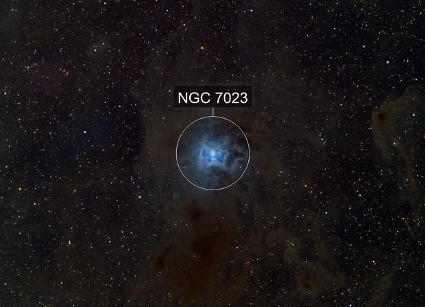 NGC 7023 (RGB)