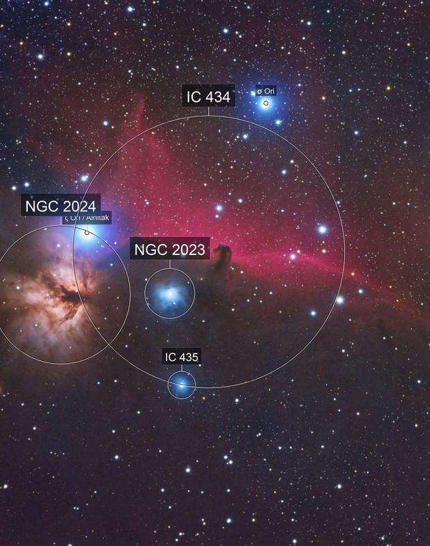 Horsehead Nebula RGB