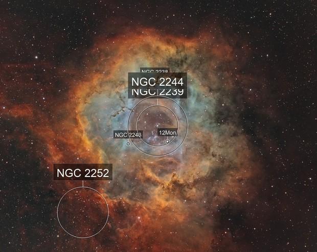 NGC 2237 - Caldwell 49