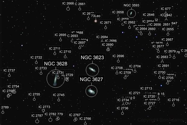 M65,  M66,  and NGC 3628  Leo's Trio