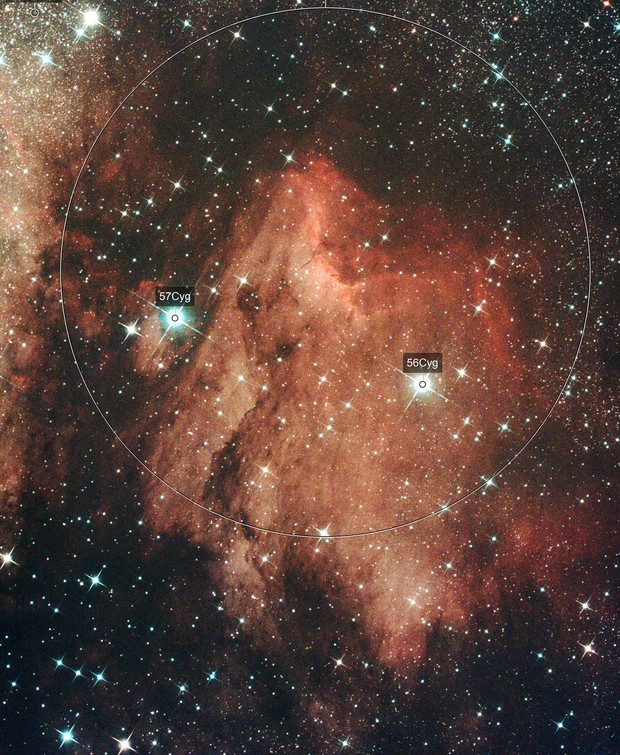 IC 5070 Pelican Nebula