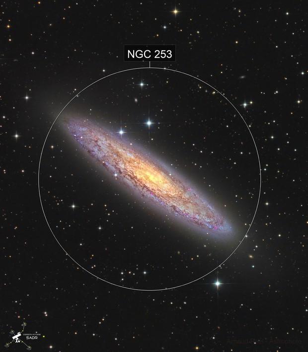 NGC253 - Sculptor galaxy - Sadr Chili -new version