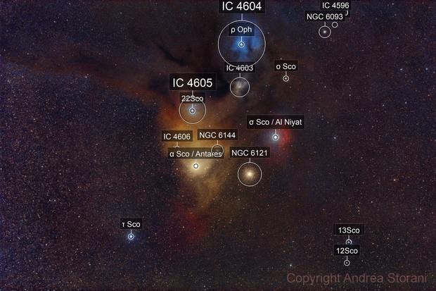 Antares - Rho Ophiuchi region