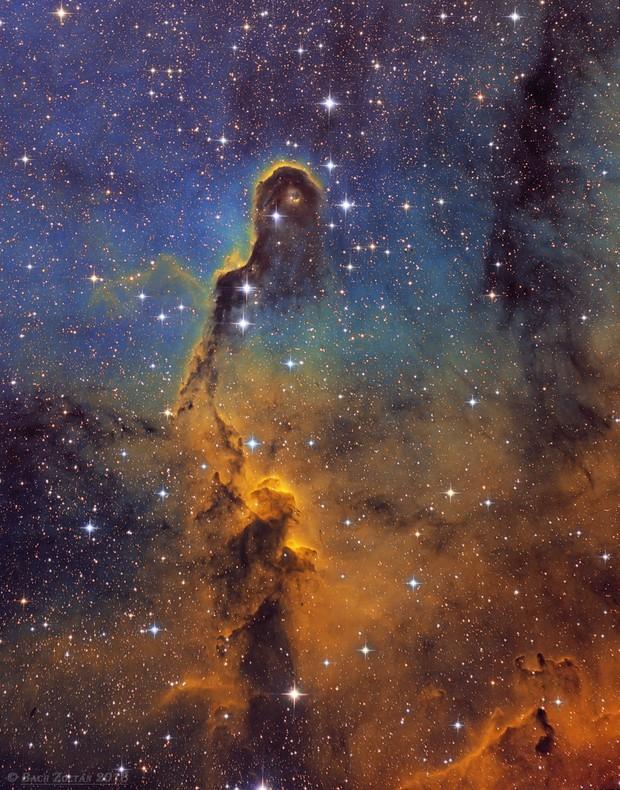 Elephant's Trunk Nebula (Hubble palette)