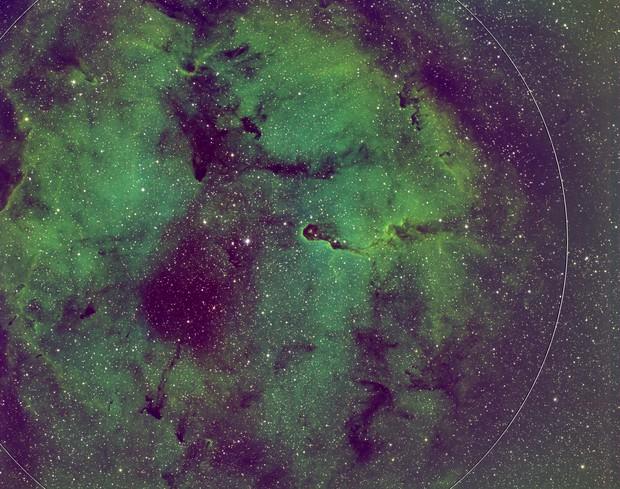 Elephant's Trunk Nebula (SHO+RGB)