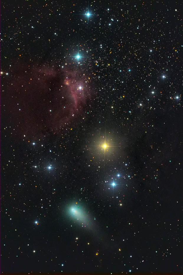 cometa 21P (G-Z) vicino ad una bella nebulosità