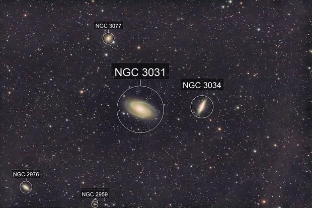 Bode's Nebula and IFN