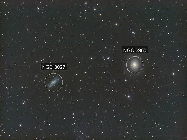 NGC 2985 and 3027