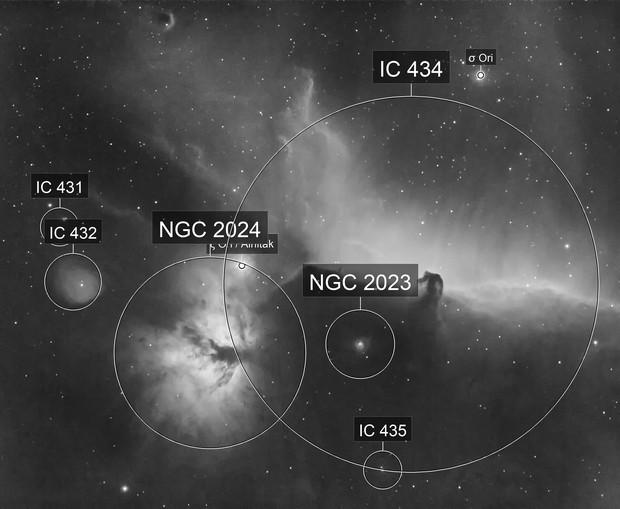 Alnitak nebula complex in Hydrogen Alpha