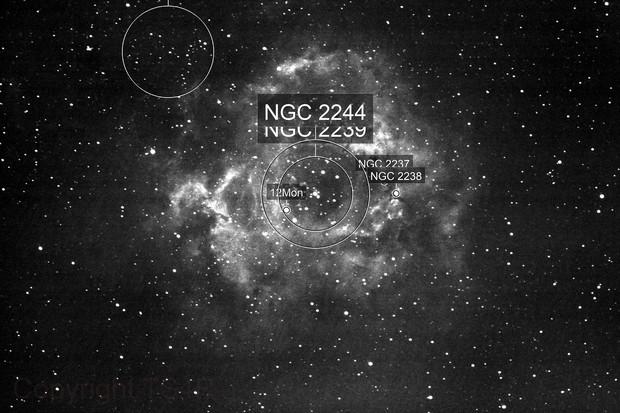 NGC2244_Rosetten-Nebel in Ha