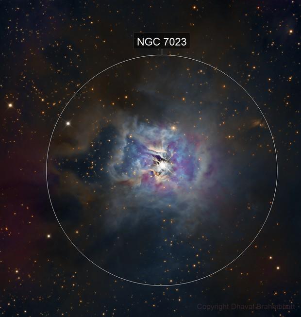 NGC 7023 - Iris Nebula (LRGB)