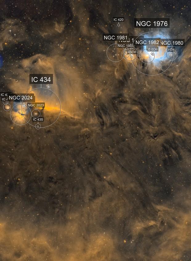 Orion Dust