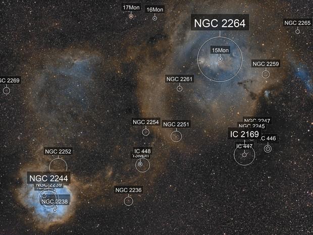 Rosette and Cone Nebulas