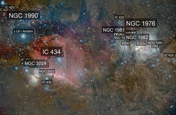 M42 & horsehead nebula