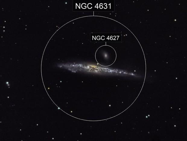 NGC 4631  -   Whale Galaxy