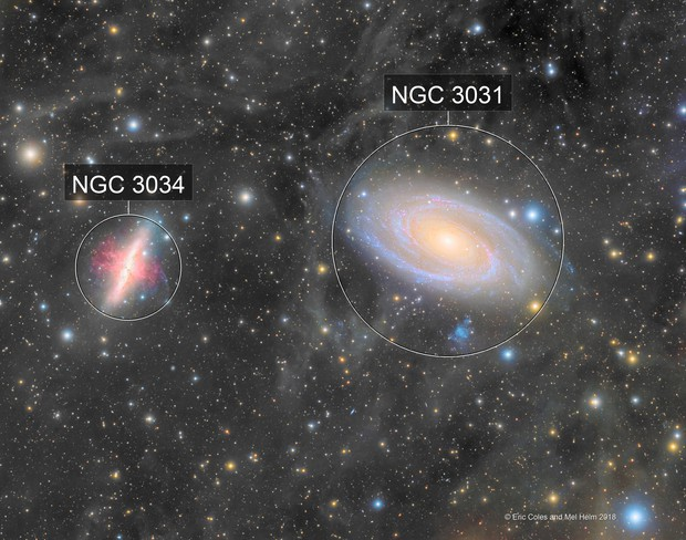 M81 and M82 with Lots of IFN