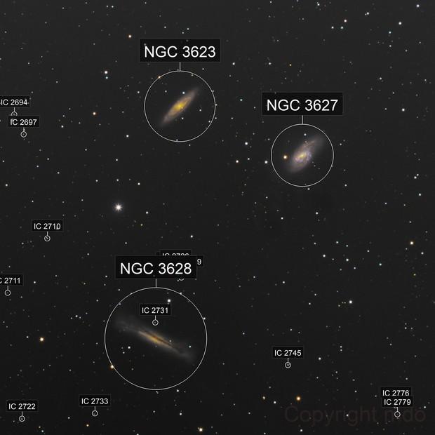 M 65, M 66,  NGC 3628, Loewe Trio