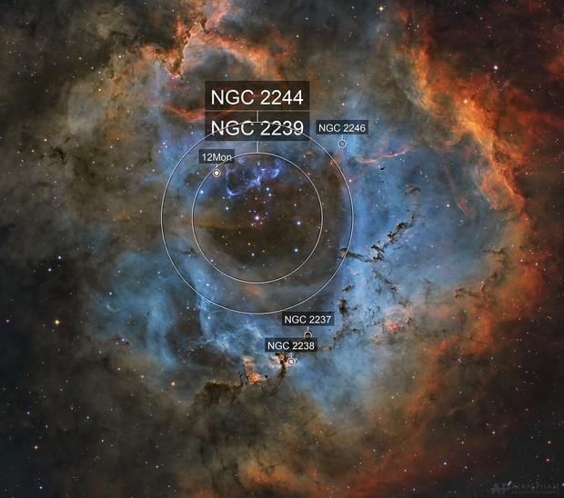 Rosette Nebula (SHO)