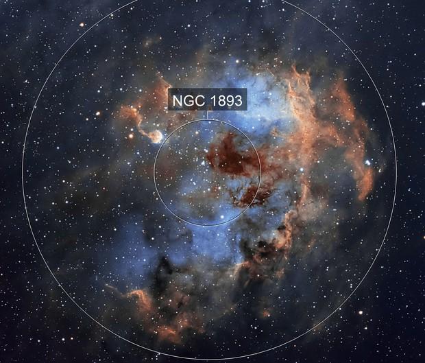 Tadpoles Nebula (IC 410) in SHO