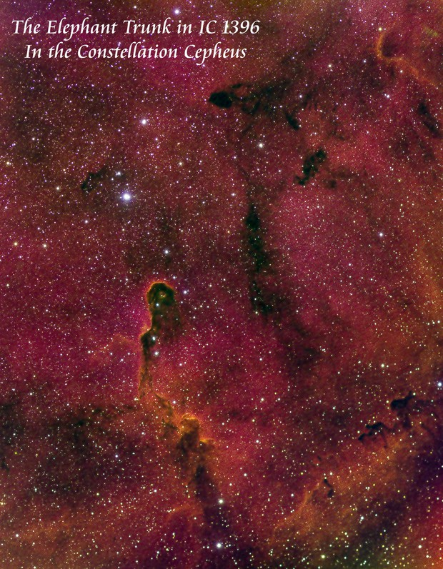 The Elephant Trunk in IC 1396