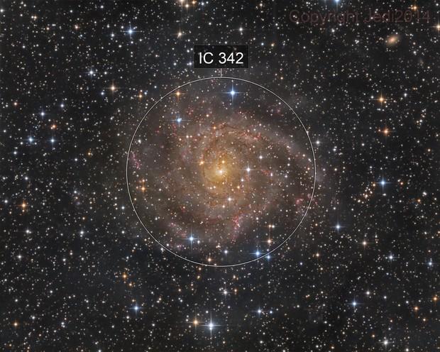 IC342 LRGB of the hidden galaxy