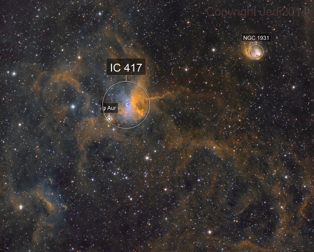 IC 417 - Spider, Fly and probably Ant