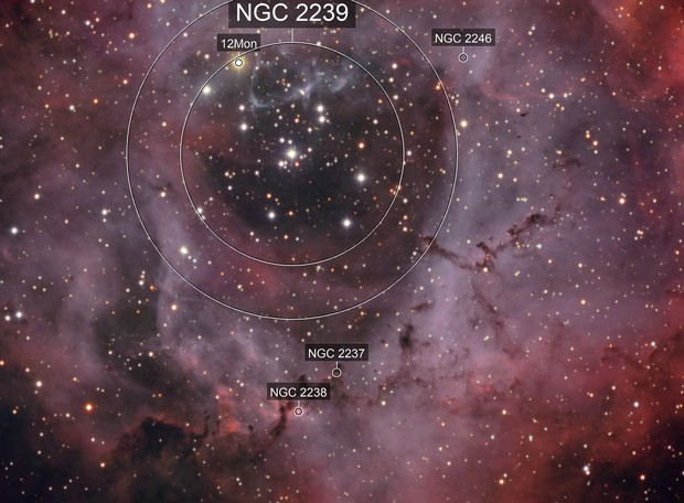 The Rosette Nebula HaOiiiRGB