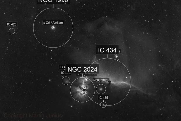 Horsehead Nebula and Friends - B33 - IC 434 - NGC 2024 - BW (Theli v1 Red)